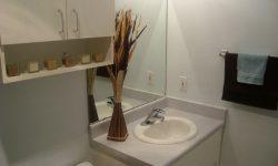HatcheryHillApartments_Bathroom Model 4