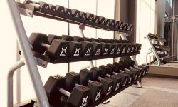 Statesman-Free Weights-Apartments