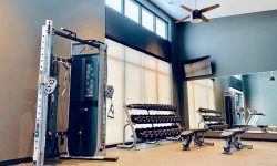 Statesman-Free weights & benches-Apartments